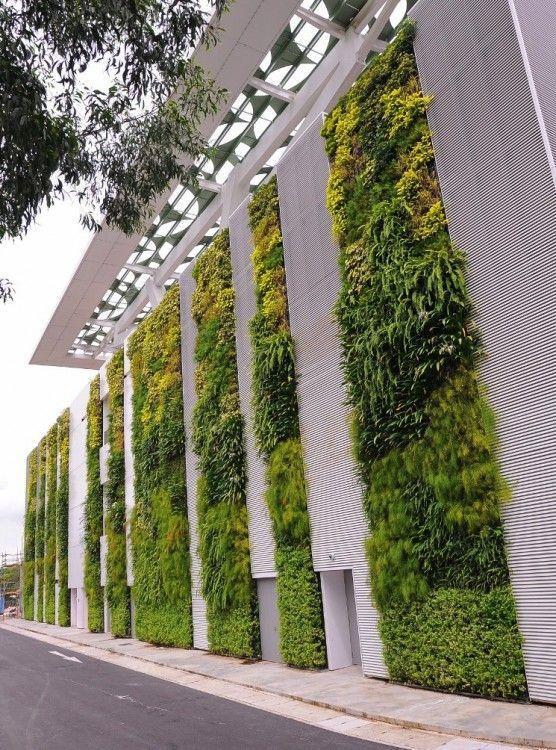 La pared viva en el Instituto de Singapur de Tecnología y Educación