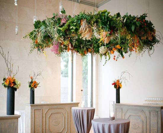 Image result for living plant chandeliers