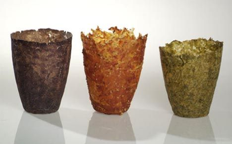 edible eco dishware designs