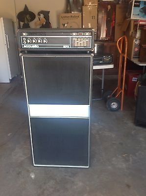 Acoustic Control 370 Bass Amplifier And 301 Speaker