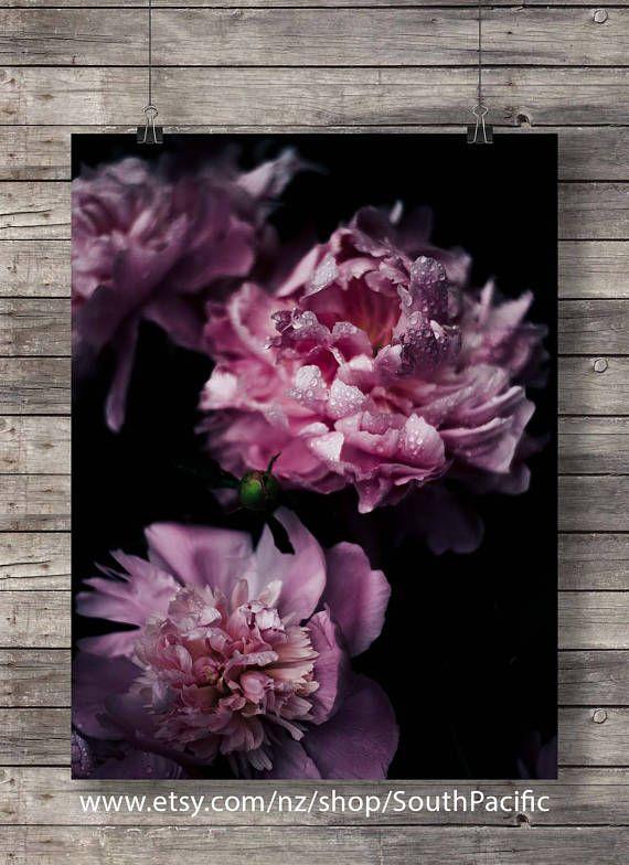 #Printable art  #peony #flowers photo  #Botanical peony  #pink #darkfloral
