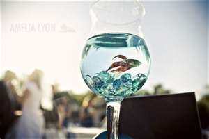 Image Search Results for fish bowl centerpieces