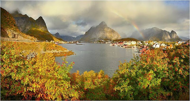 The archipelago of Lofoten in Norway is north of the Arctic Circle, but because of the largest temperature anomaly relative to latitude, it is a paradise with its own coral reef.