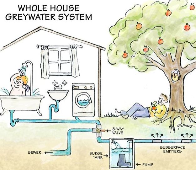 Use greywater to conserve water| Sustainable Living at http://pioneersettler.com/conserve-water-sustainable-living