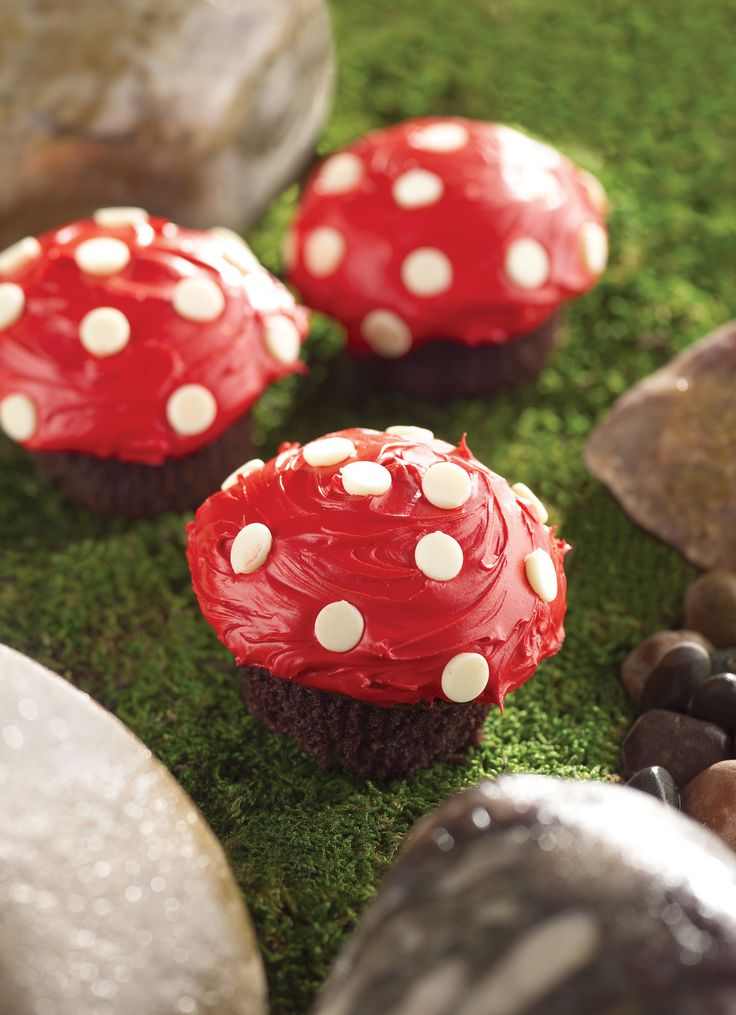 Cutest cupcakes ever! Little mushrooms using chocolate cupcakes, red icing and white chocolate buds.