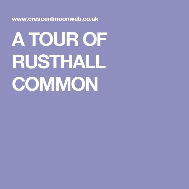 A TOUR OF RUSTHALL COMMON