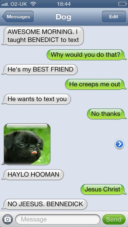 pet conversations texting with its owner | For the fans, a book will be coming out soon!