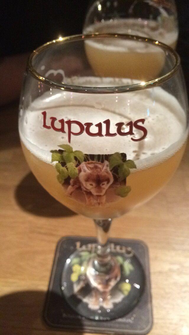 Lupulus, bières, Colmar
