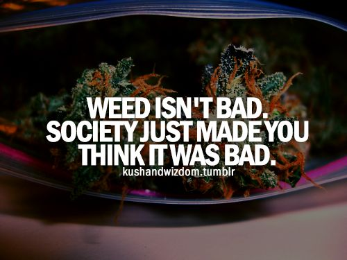 Are you following Stoner Motivation yet? So very true , its a magic plant that can do all kinds of things . today society has this idea making them say no to a plant that helps u .. But instead they want you to buy there drugs that mess you up so very ... So u decide do u thank that it helps u.. Let me know  ,whats on your mind