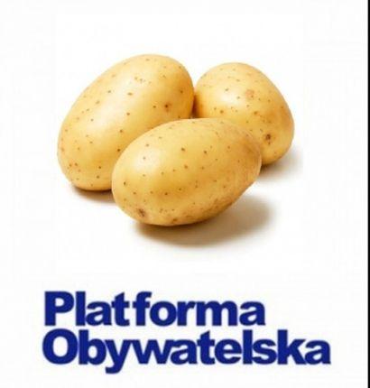 Życie posłów Platformy zaczyna przypominać żywot ziemniaków.