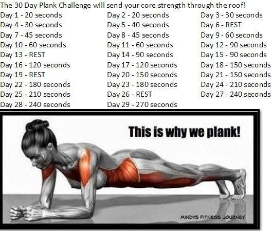 30 day plank challenge - something to do with my students in phys ed class