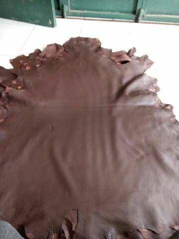 Kulit domba coklat tua