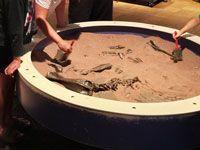 Digging at the ROM