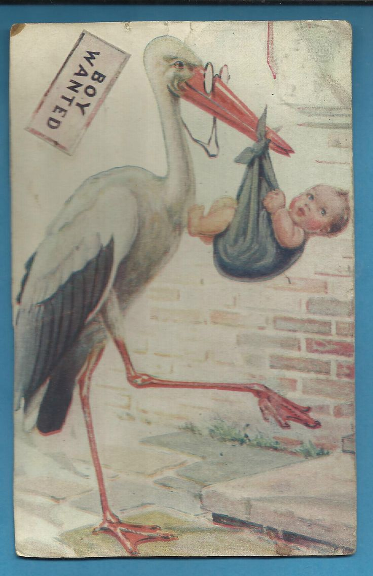 """Boy Wanted"" Sign Stork with Baby Boy Old Postcard 1907 