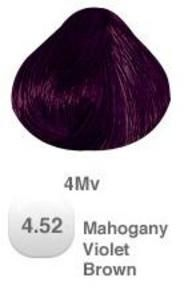 PRAVANA HAIR COLOR 4.52 MAHOGANY VIOLET BROWN ~~ Hmmm, may have to