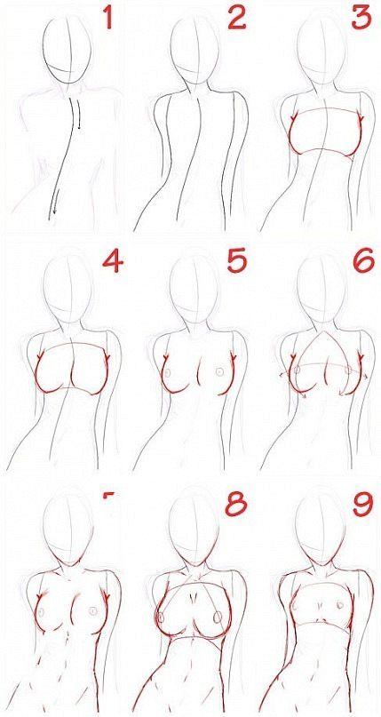 Anatomy                                                                                                                                                                                 More