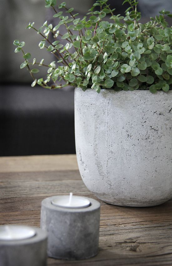2nd living room | concrete flowerpot