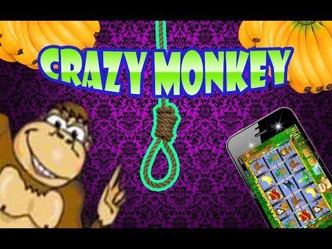 Grazy monkey казино metagame dota 2 рулетка