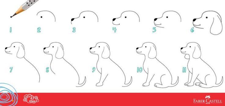 Step by step draw a dog