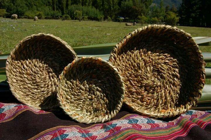 Cestería mapuche