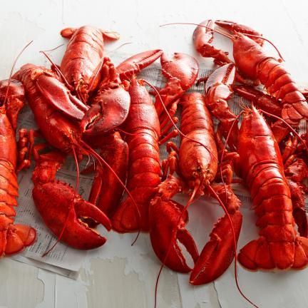 Buying Lobster Guide