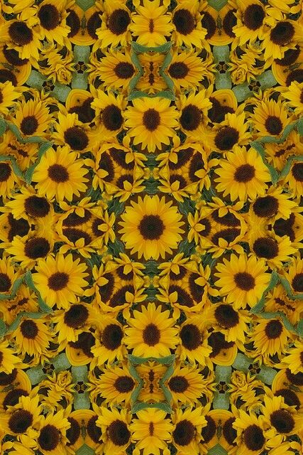 Psychedelic sunflower | Psychedelia | Pinterest ...