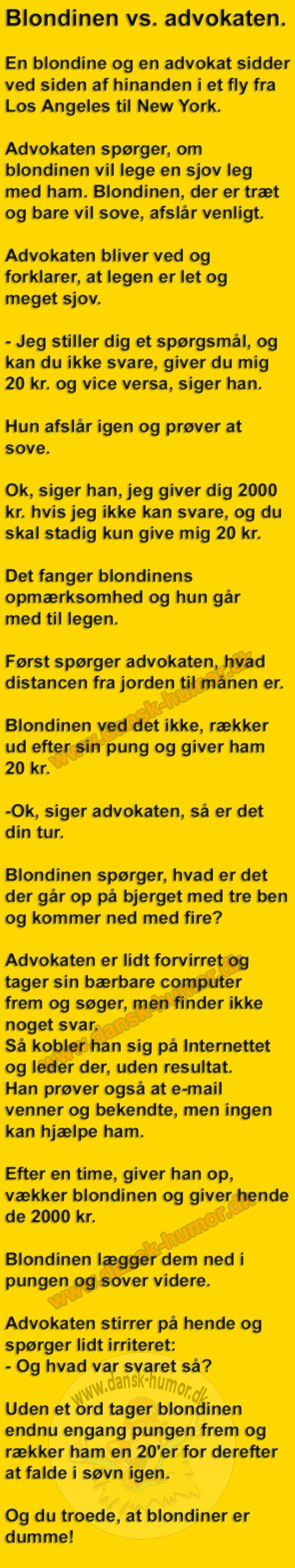 Blondinen vs. advokaten.