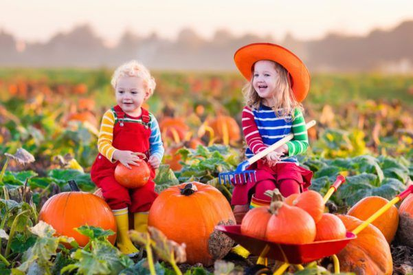 Fall festivals in DFW