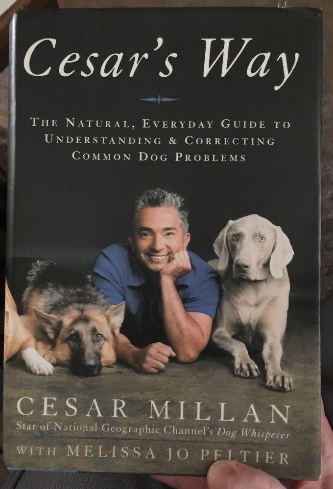 Cesar S Way By Cesar Millan The Dog Whisper Hc Dj 2006 First
