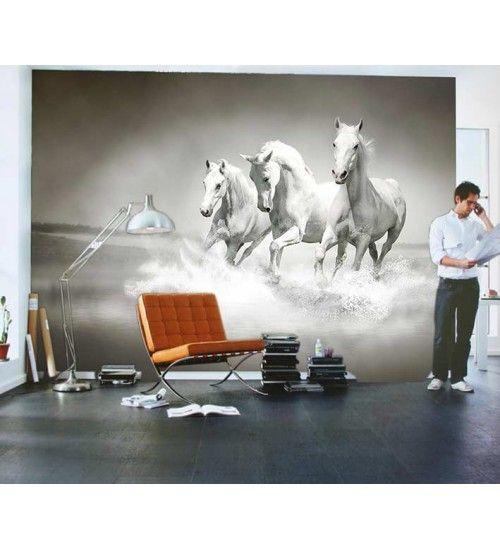 Beyaz Atlar Duvar Resmi a Farklı ebatlar için bizimle irtibata geçin lütfen.