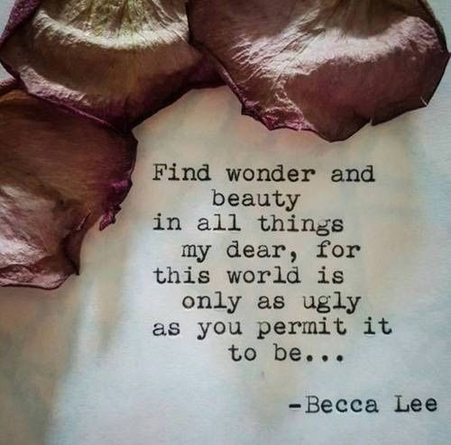 Find wonder & beauty in all things my dear, for this world is only as ugly as you permit it to be... -Becca Lee