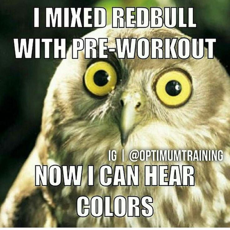 Humor Inspirational Quotes: Best 25+ Pre Workout Meme Ideas On Pinterest