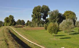 Vista di parte del Parco Fluviale di Lucca