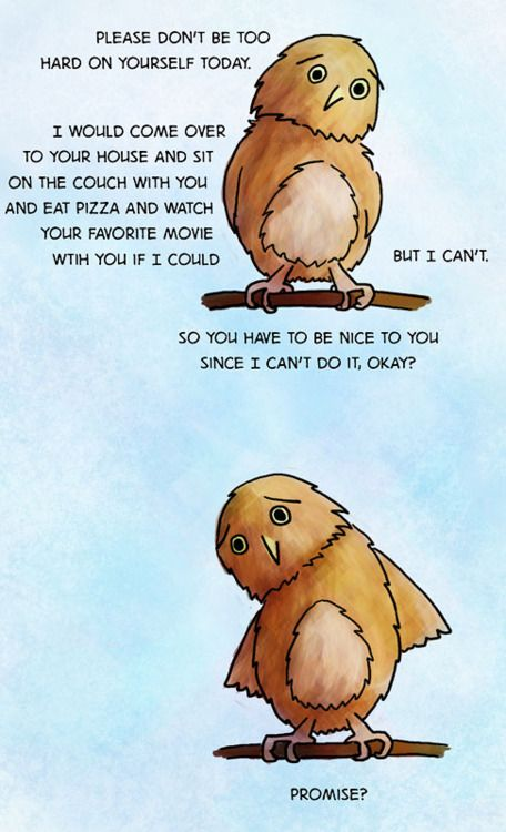 Some days you just need a pep talk from a little birdie!