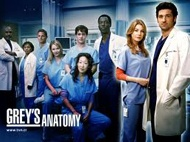 Free Streaming Video Grey's Anatomy Season 9 Episode 9 (Full Video) Grey's Anatomy Season 9 Episode 9 - Run, Baby, Run Summary: As the rest of the doctors prepare for Bailey's wedding, Richard helps her through a bout of pre-wedding jitters. Meanwhile, Lizzie butts heads with Meredith, and Callie and Jackson try to convince Derek to participate in a risky surgery that could fix his hand.