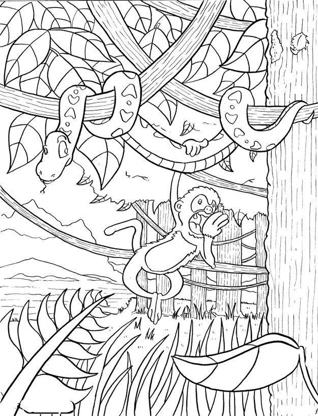 Rainforest Coloring Pages For Adults : Adult coloring pages rainforest