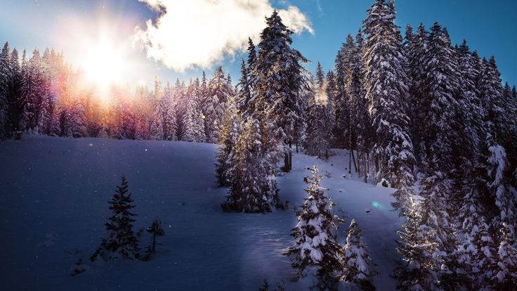 4k Winter Wallpapers High Quality Download Free iPhone X Wallpaper 364299057354674217 1