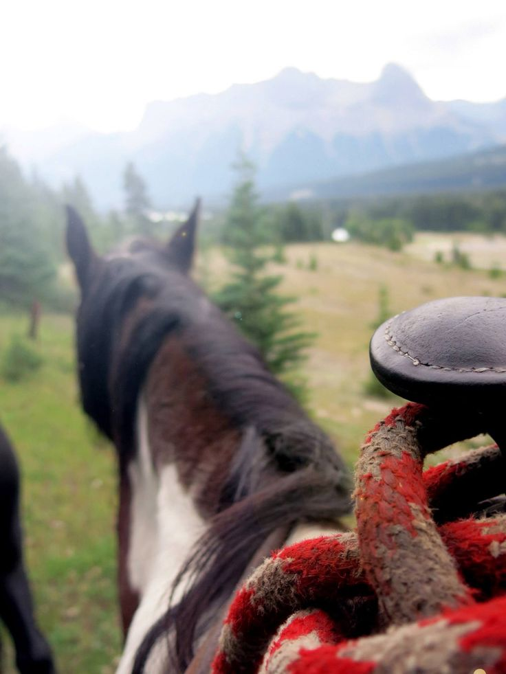 Things to do in Calgary, Alberta. Horseback riding in the mountains.
