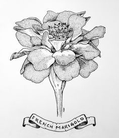 marigold tattoo - Google Search