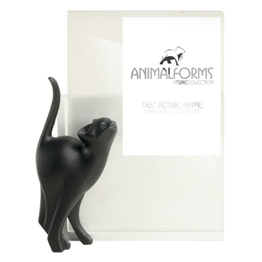 4D Art 7-inch Adoring Cat Sits Photo Picture Frame