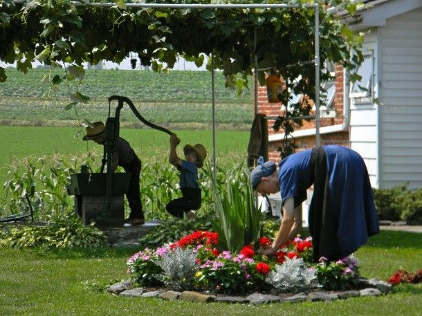 amish family in the garden