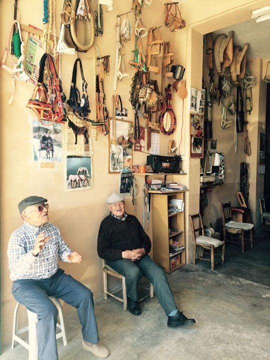 Moncarapacho Saddlery