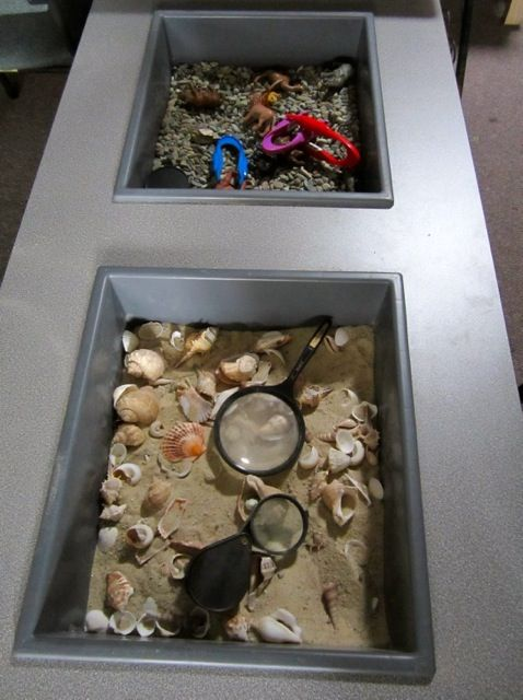 Sensory Tubs exploration and provocation ≈≈ Early Life Foundations ≈≈