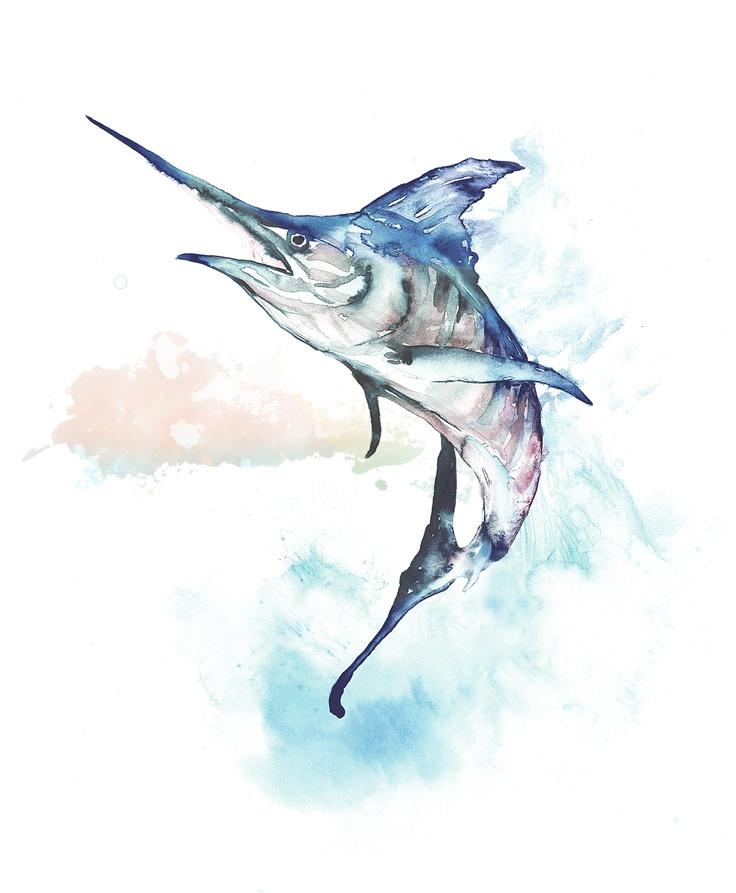 Marlin Bar Watercolor illustration for Tommy Bahama