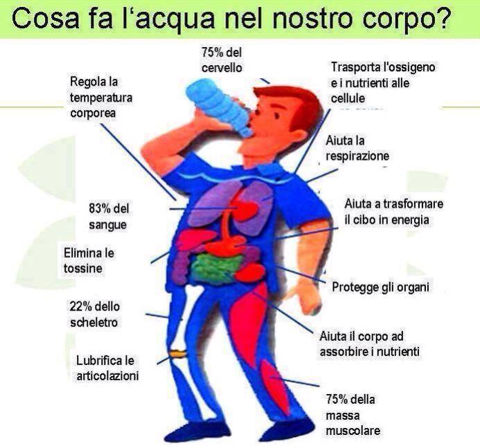 bere acqua fa molto bene alla salute
