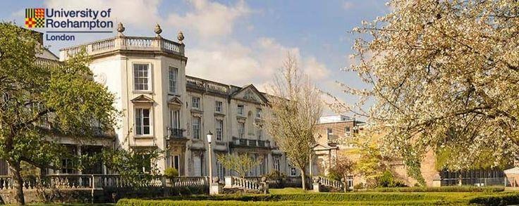 Distance Education: University of Roehampton (UK): WordPress Plugins For eCourse