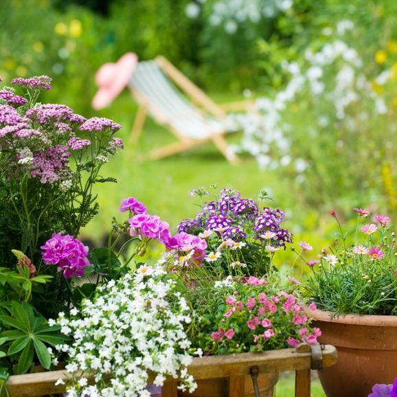 Fresh  Automatische Bew sserung Tipps f r den Garten im Urlaub