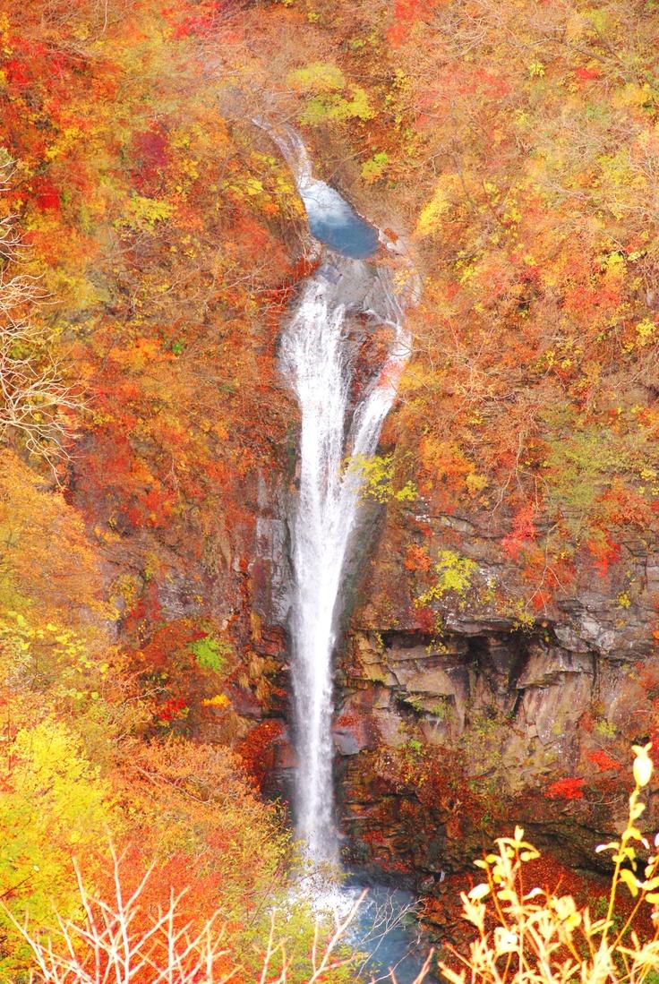 紅葉の平成の森駒止の滝。絶景です。