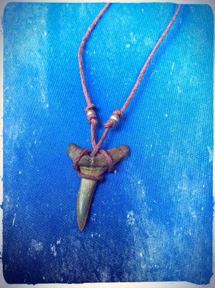 Shark Tooth Fossil Adjustable Hemp Necklace by washdupwondrs on Etsy https://www.etsy.com/listing/245645462/shark-tooth-fossil-adjustable-hemp