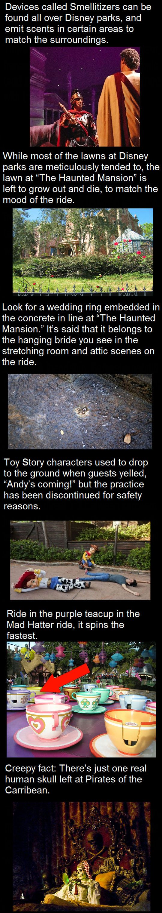 Things You Probably Didn't Know About Disney Parks // funny pictures - funny photos - funny images - funny pics - funny quotes - #lol #humor #funnypictures